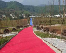 Resources thirty-nine pharmaceutical medicine planting base in Ya'an, Sichuan
